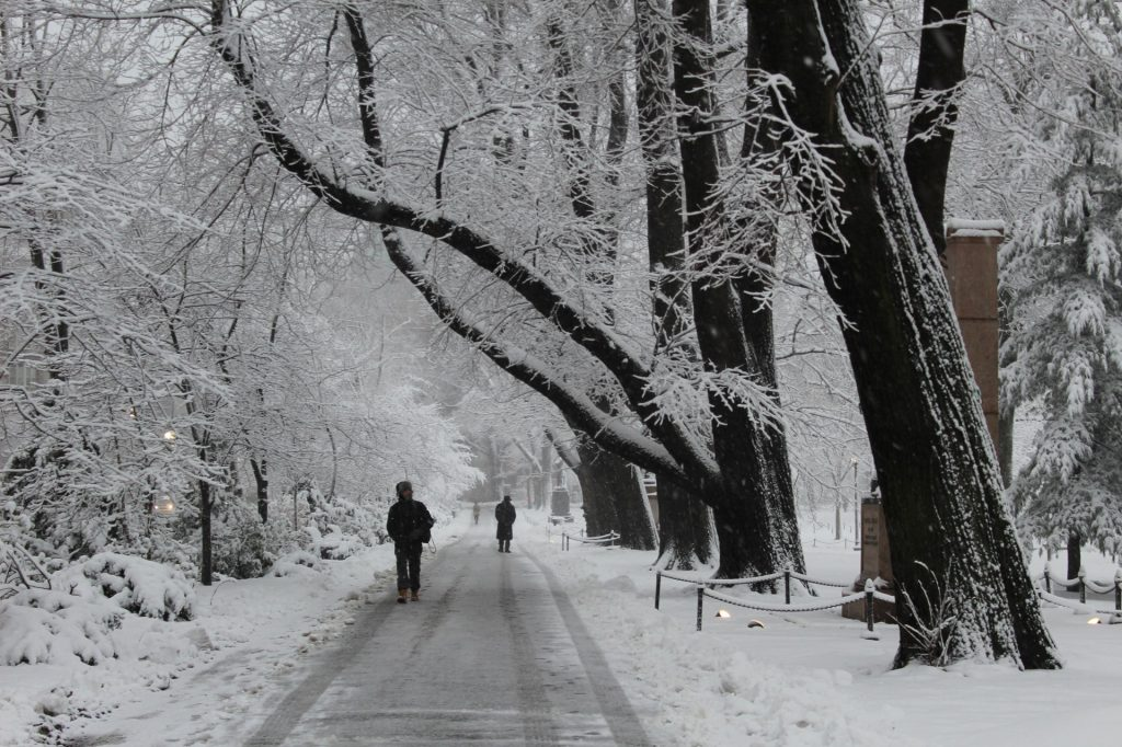 Boston Winters
